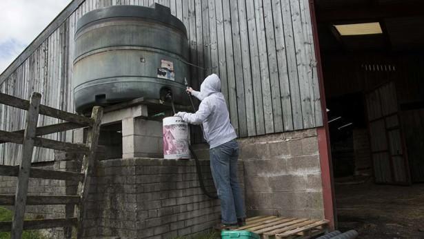 burgular stealing fuel from farm